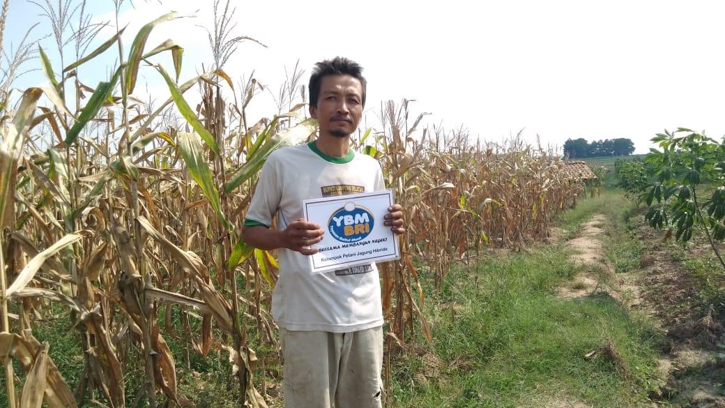 Suparman IP2BK Lampung