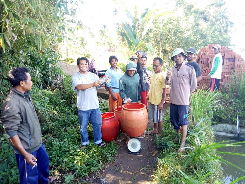 Nila Bangkitkan Lombok